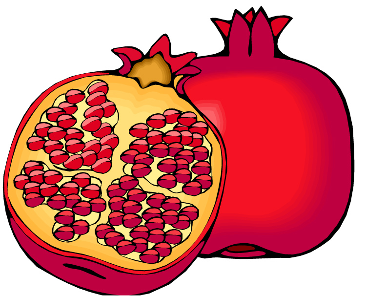 Pomegranate clipart black and white